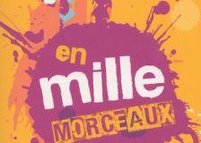 'En mille morceaux', un roman et un site internet pour les jeunes