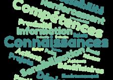 Le Plan prévention et promotion de la santé en Wallonie – Proposition pour l'opérationnalisation