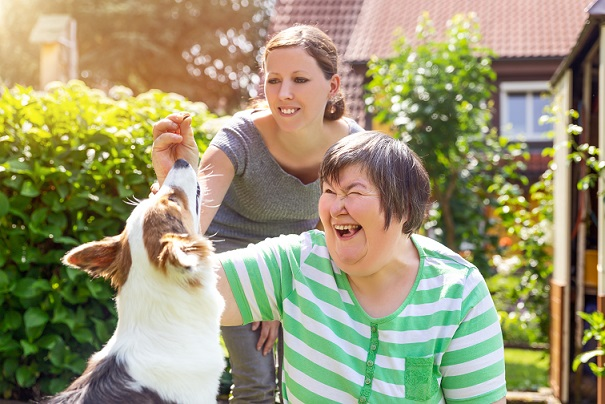 Thérapie animale assistée