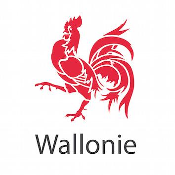 La promotion de la santé et la prévention en Wallonie en 2016
