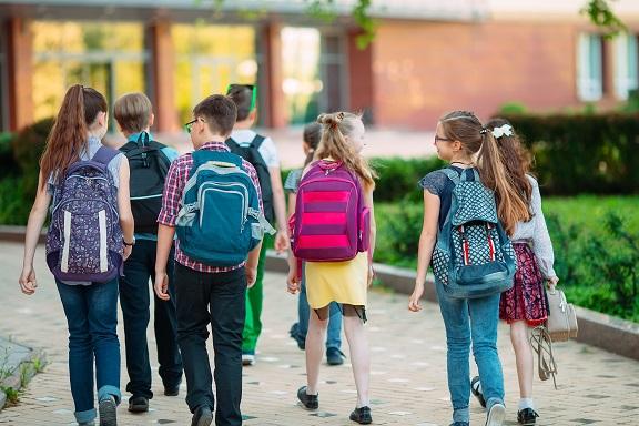 Promotion de la Santé à l'Ecole: quels outils pour quelles pratiques?