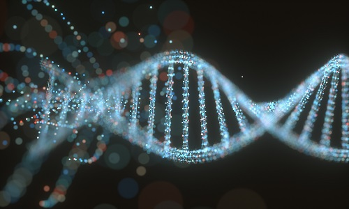 L'ADN : une molécule hypersensible